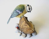 Border Fine Arts Blue Tit on Coconut Shell by Ray Ayres, RB3, 1983