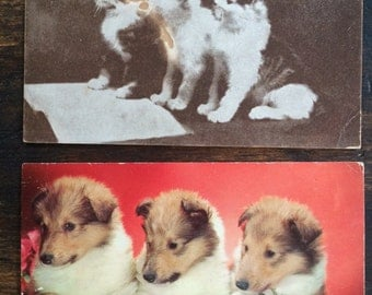 Lot of Two (2) Vintage Puppy & Kitten Postcards