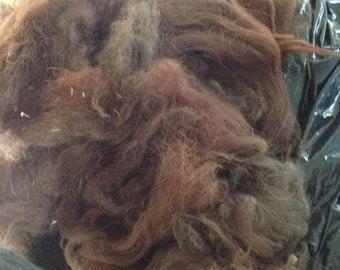 Alpaca Fleece - Brown - Raw and Unwashed Fiber - spinning - felting - weaving - blending 001