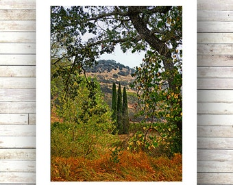 FAUX TUSCANY - Napa Valley - Wine Country - Sonoma - California - Landscape Photography - Fine Art Photograph-Limited Edition of 250