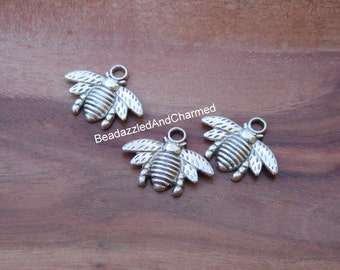 Bee Honey Bee Firefly Fire Fly Lightening Bug  Bee Stinging Insect Bug Insect Spring Garden Charms!