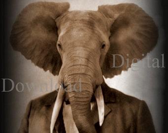 Mr. Elephant Digital Download photo