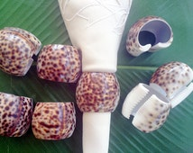 Beautiful Unique Cowrie Sea Shells Table Napkin Holders, Philippine Cowrie Sea Shell Napkin Holders, Natural Sea Shells Napkin Holders