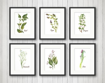Watercolor Herbs Prints - Herb Print - Herbs Kitchen Decor - Botanical Print - Kitchen Art - Culinary Herb Print - 4x6, 5x7 or 8x10