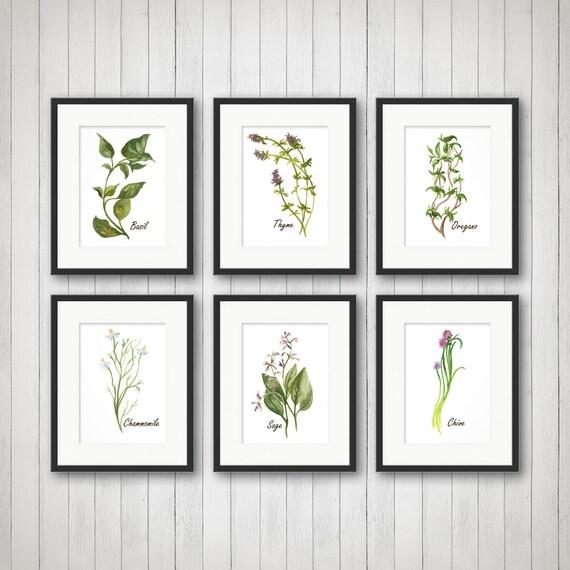 Watercolor Herbs Prints Herb Print Herbs Kitchen Decor