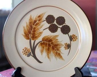 Vintage Denby Cotswold salad/dinner  plates.