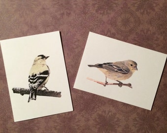 Set of 12 Handmade Blank Goldfinch Bird Print Note Cards