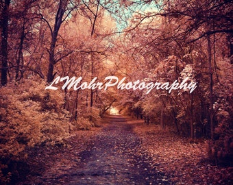 Landscape Photography, Infrared Photography, Nature Photography, Art Photography