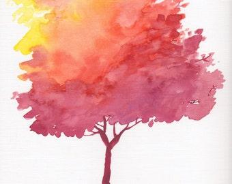 Colors of Fall - Fine Art PRINT