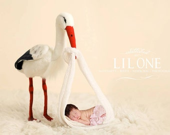 Instant Download newborn backdrop! Stork with baby wrap! So unique!