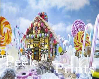 6ftx6ft Sugar Plum Fairies House Vinyl Photography Backdrop- Fun Holiday Backdrop