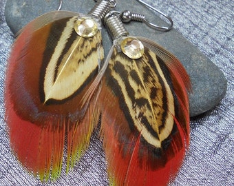 Genuine Parrot feather earrings.