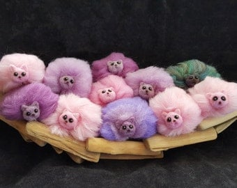 Pygmy Puffs in Pink and Purple