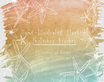 Hand Illustrated Starfish Photoshop Brush Set, Beach Starfish clip art