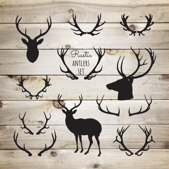 Deer Antler Graphic