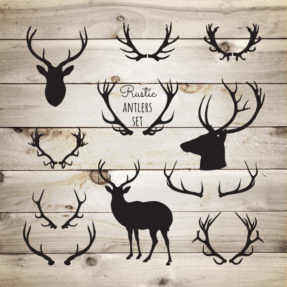 Deer antlers clipart - photo#33