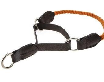 Round Rope and Leather Martingale Dog Collar Training 10 colors  10 Sizes Sturdy Colorful