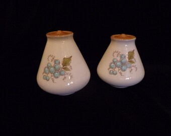 Turquoise And Brown Salt and Pepper Shakers , Turquoise Grapes Salt and Pepper, Grape Cluster Design Porcelain Salt and Pepper Shakers