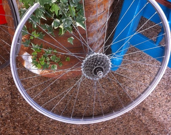 Bicycle Rims without tires with or without gear plates