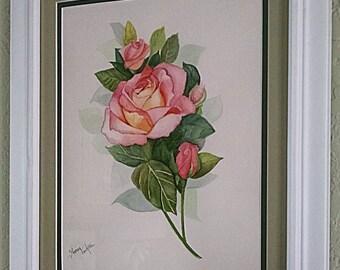 A Soft Rose