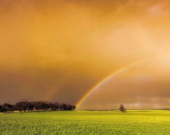 Rainbow - SKU 0232