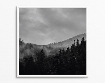 Black and White Photography, Landscape Photography, Tree Art, Black and White, Forest Photography, Forest Art, Forest Print, Rustic Decor