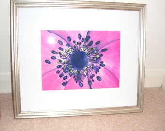 Pink Anemone  -  Luxury Watercolour Abstract Painting - Fine Art  Prints and Greetings Cards