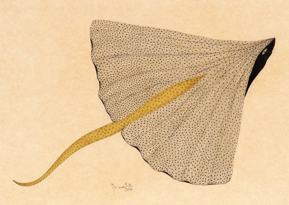Large Ginkgo Ray - Ink Drawing - Unique
