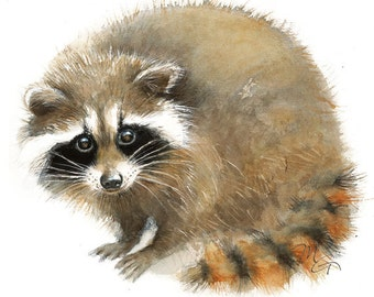 Baby Raccoon watercolor - Giclee Print - Home Wall Decor - Raccoon  Watercolor Illustration - Woodland animals