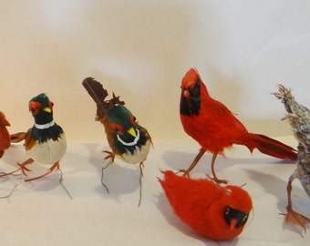 Lot of 6 Vintage Christmas Ornament Birds Wired Feet Feathers all Different