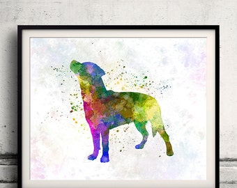Smalandsstovare 01 in watercolor - Fine Art Print Poster Decor Home Watercolor Illustration Dog - SKU 1446