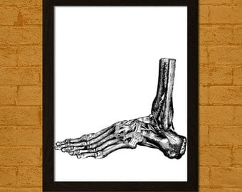 Human foot etsy for Decor vein tendonitis
