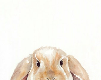Baby Bunny - Print