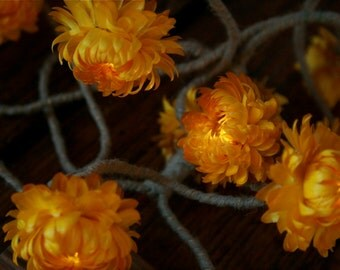 Light Garland With Real Everlasting Golden Flowers - Nature Art - Battery Operated - Wedding Decor