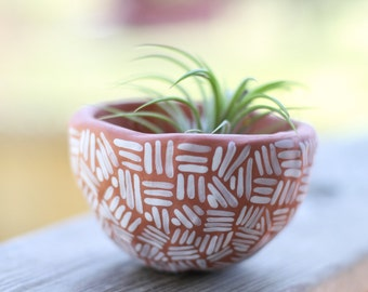 Red Earthenware Succulent planter