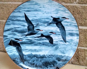 Wings Above the Water from Winged Reflections Plate Collection by Ron Parker 1988 Limited Edition - Terns by Shore