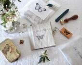 Lepidoptera Fanzine - a fanzine about butterflies