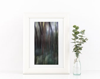Forest fine art photography giclee limited edition print