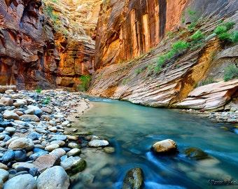 Virgin Narrows, Zion National Park