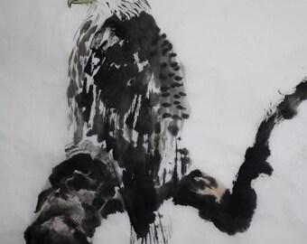 The Baldest Eagle