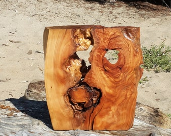 Monterey Cypress Kobu