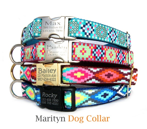 Dog Collar With Tag Attached