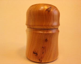 Japanese Yew container