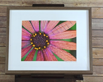 Original Framed Embroidered Nature Photography