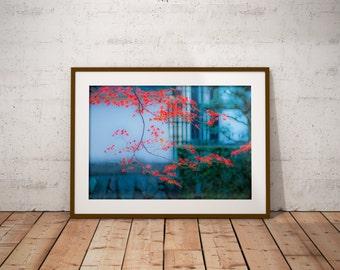 Fall Canvas Print, Home Decor Wall Art, Fall Leaves Photo, Autumn Wall Decor, Maple Leaves Print, MyPixelDiaries, Fall Home Decor