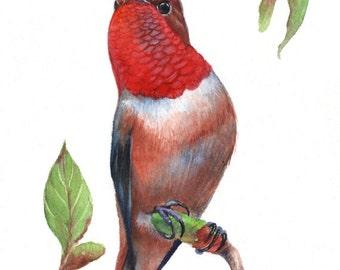 Watercolor bird, instant download bird, Printable Watercolor Painting, Watercolor bird print