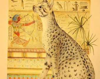 """Egyptian-themed Mau 11"""" x 14"""" High Quality Matted and Signed Print from original colored-pencil drawing"""