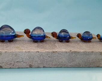 Tortoise Glass Family