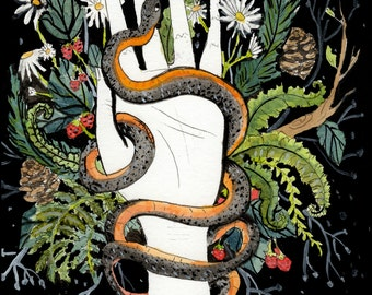 Copperbelly Snake in Hand. Watercolor Print.