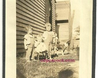 Vintage dog animal pet farm overalls kids photo mutt shadow